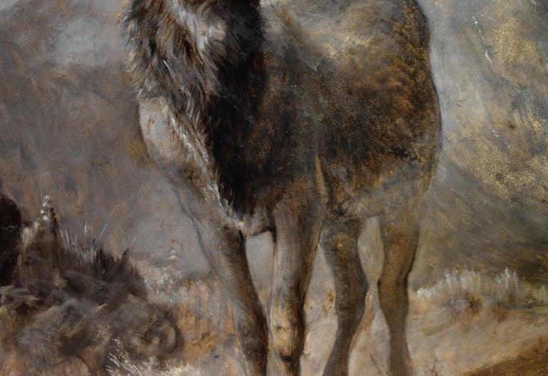 The Young Pretender - Huge 19th Century Scottish Oil Painting of Highland Stag For Sale 5