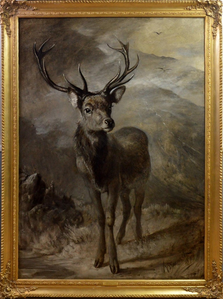 This is a very large fine 19th century oil on canvas depicting a magnificent Highland stag by the distinguished Scottish painter Joseph Denovan Adam RSA RSW (1841-1896). 'The Young Pretender' is signed by the artist and dated 1877. It is sold in a