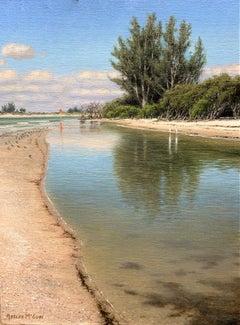 The Florida Waterways, Tidal Pool