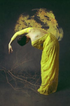 Desolate Amber by Jo Cardin - Contemporary Figurative photography on Diasec