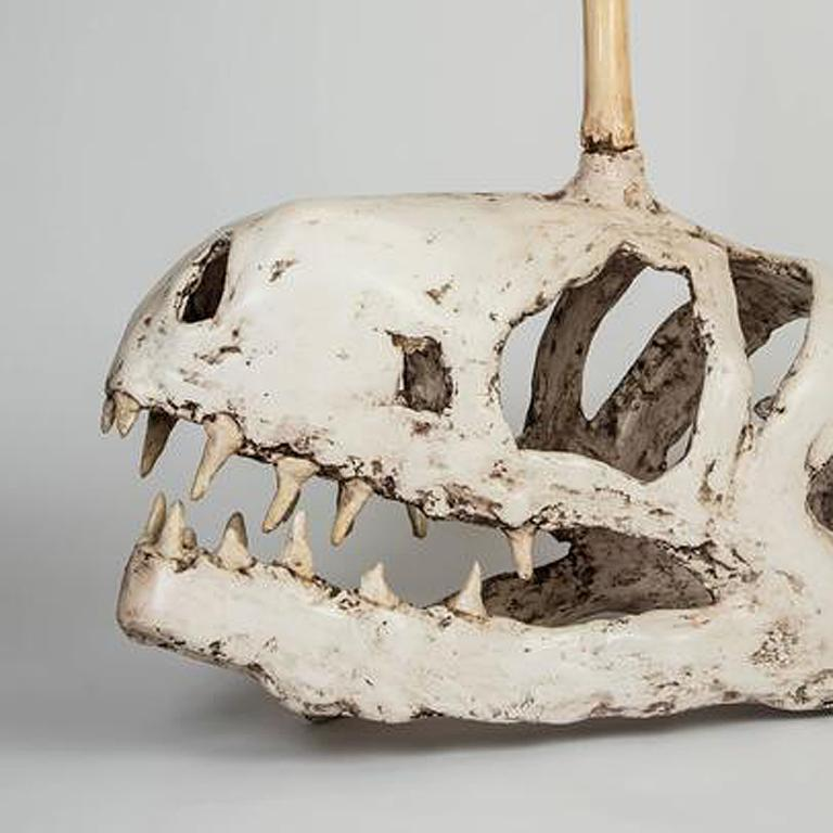 Adolescent Unicorn T-Rex Skull with 'No Fear' Bedazzlement - Gray Figurative Sculpture by Joshua Goode