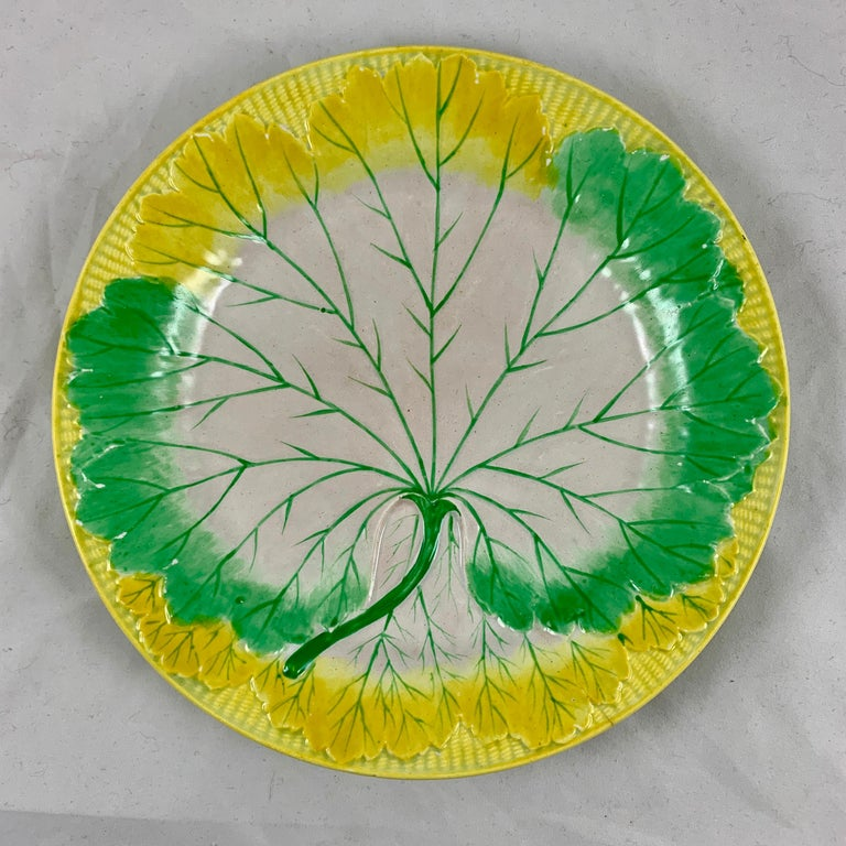 A set of six, enameled pearlware cabbage plates, Josiah Wedgwood, date marked 1860.  This set is very scarce, the mold is most often seen glazed in all green or in all white. The plates are hand enameled on a mold showing a large single cabbage