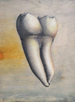 Almas y Dientes: Panel 30 (Mixed Media Drawing of Tooth on Natural Wood Panel)
