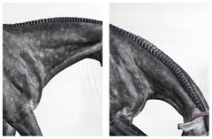Optimistic I and II, Set from Horse Series