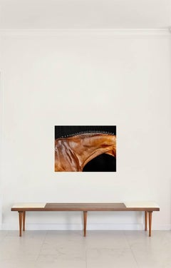 Orbetello Neck, Horse Series, Medium Archival Pigment Print