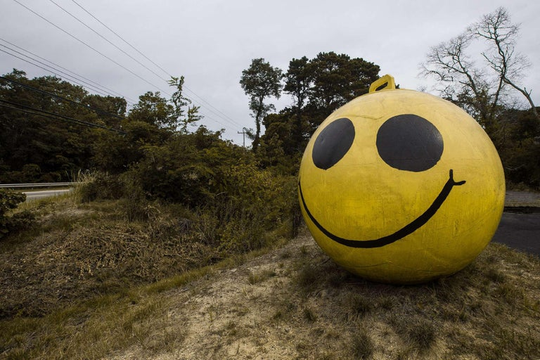 Juan Pablo Castro Color Photograph - Oh Happy Day!