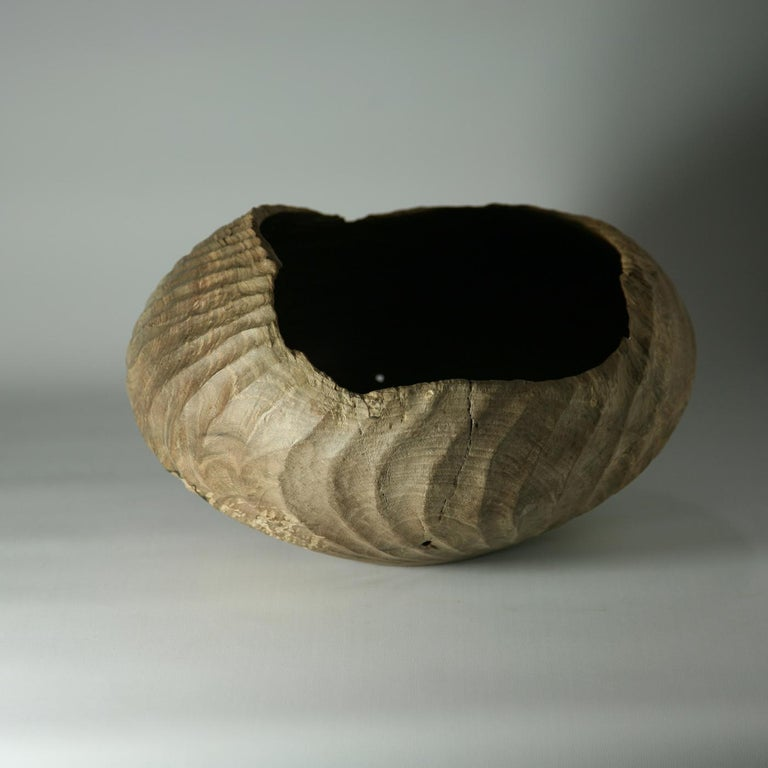Juglans Regia Bowl In New Condition For Sale In Milan, IT