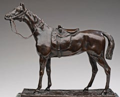 Horse Portrait with Saddle and Tack