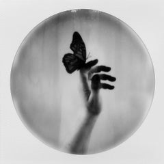 Butterfly Caught - Polaroid, Color, 21st Century, Contemporary, Spring time