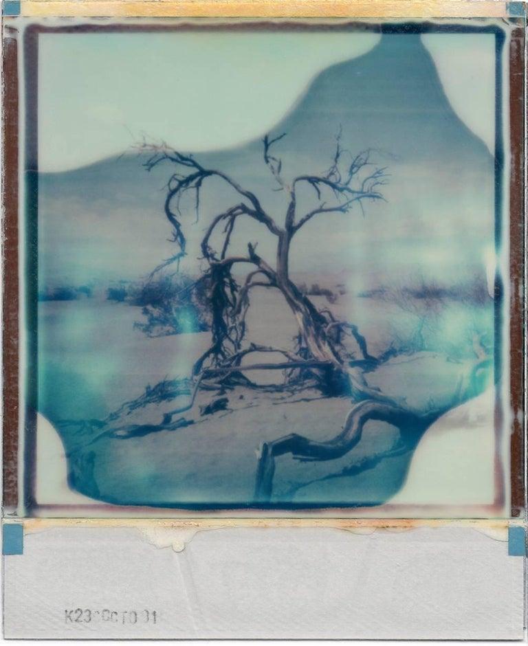 Desert Dream - Contemporary, 21st Century, Polaroid, Landscape - Photograph by Julia Beyer
