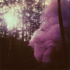 Into The Woods We Ran - (Forever and Ever) - Polaroid, 21st Century, Forest