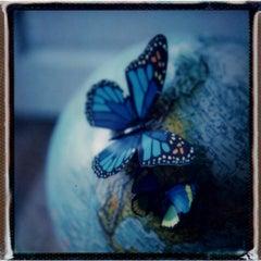 Itiner - 21st Century, Polaroid, Still Life Photography, Contemporary
