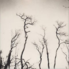 Spleen & Ideal - Contemporary, Polaroid, 21st Century, Photography, Landscape