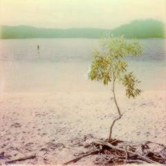 Summer-Blink - Contemporary, Polaroid, 21st Century, Photography, Landscape