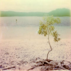 Summer-Blink - Contemporary, Polaroid, 21st Century, Photography, Landscape