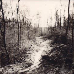 Wander And Get Lost - Contemporary, Polaroid, 21st Century, Landscape