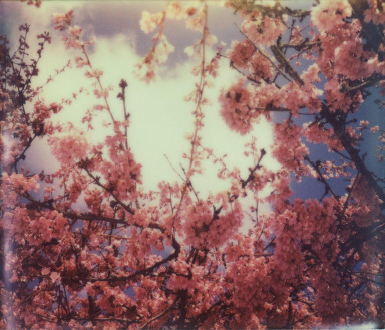 Julia Beyer Color Photograph - What Lies Beneath The Sky - Forever and Ever