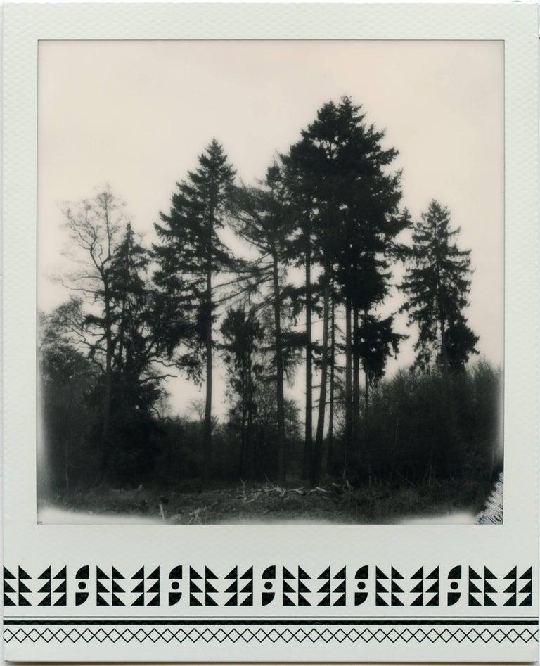 Where My Heart Belongs I - Contemporary, 21st Century, Photography, Polaroid - Gray Landscape Photograph by Julia Beyer
