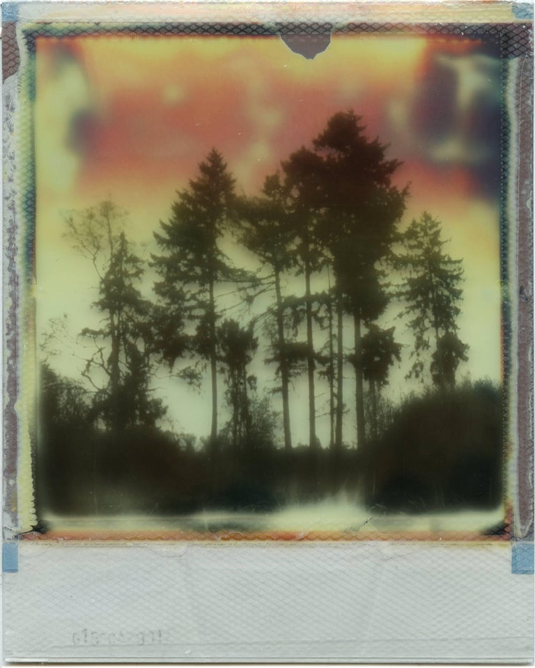 """'Where My Heart Belongs I', 2017, 20 x 32 cm, Edition 2/10, Digital C-Print based on a Polaroid Diptych, not mounted. Numbered and signed on the back by the artist.  Artist Statement """"Since my childhood days I always loved taking photos, but for"""