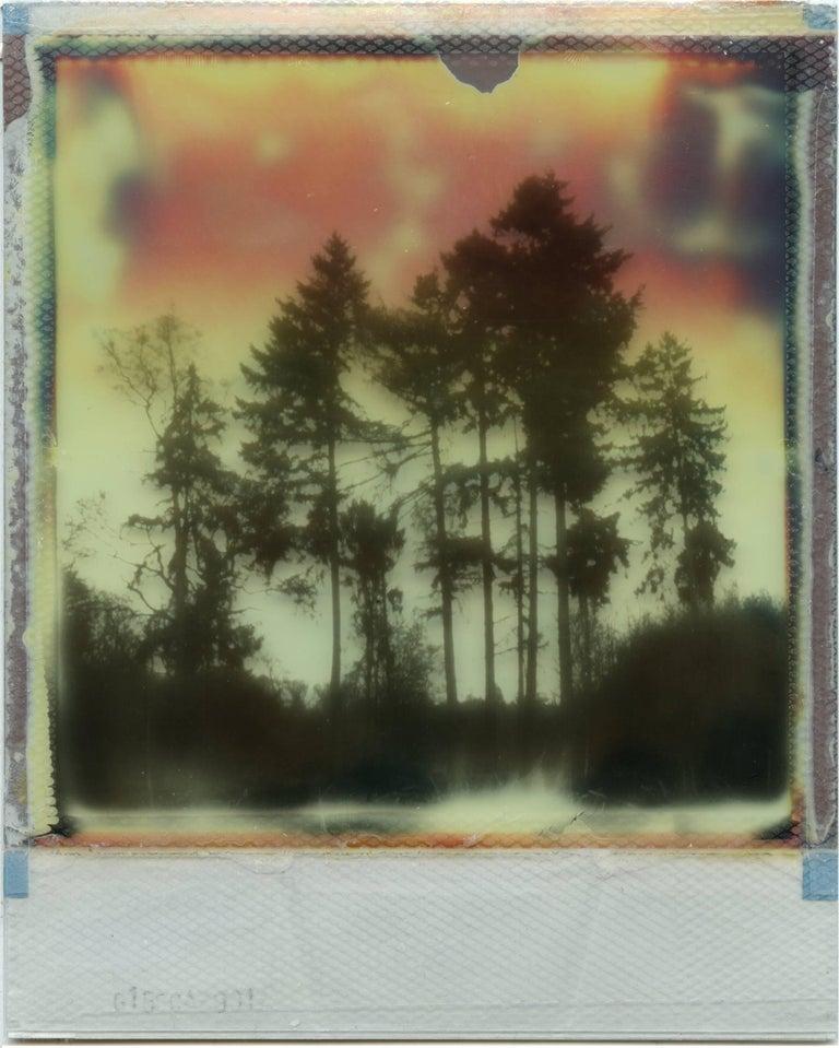Where My Heart Belongs I - Polaroid, Landscape, Forrest, Contemporary - Gray Landscape Photograph by Julia Beyer