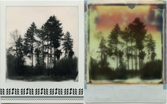 Where My Heart Belongs I - Polaroid, Landscape, Forrest, Contemporary