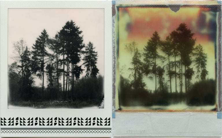 Julia Beyer Landscape Photograph - Where My Heart Belongs I - Polaroid, Landscape, Forrest, Contemporary