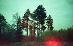 Where My Heart Belongs II - Polaroid, Forrest, Contemporary