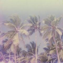 Where's The Black Smoke - Contemporary, Polaroid, 21st Century, Landscape