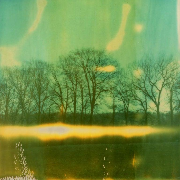 Julia Beyer Landscape Photograph - Winter Landscape - Contemporary, Polaroid, 21st Century, Landscape