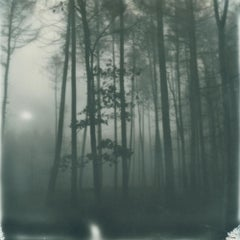Winter's Solace - Contemporary, Polaroid, 21st Century, Photography, Landscape