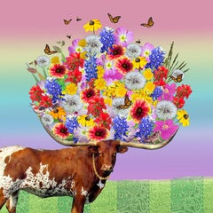 Longhorn Bouquet - Texas springtime rainbow flowers w/ monarch butterflies