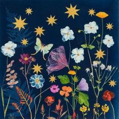 Anemone, Stars, Luna Moth (Still Life Cyanotype Painting of Flowers on Indigo)