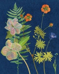 Hellebore, Fern: Still Life Cyanotype Painting of Flowers & Fern on Indigo Blue
