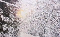 Le sentier de neige (Saint-Gilles, Qc)