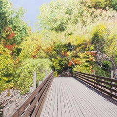 Pont des Chutes Wilson (Parc Regional de la rivière du Nord, Qc)