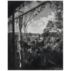 Julius Shulman Photograph View from Neutra Silverlake California Modern, 1958