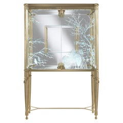 Jumbo Collection Fuji Showcase in Brass and Glass