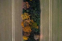 Kacper Kowalski, Seasons/Autumn #38, abstract aerial landscape photograph, 2015