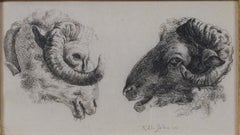 """""""Two Rams Facing Each Other,"""" Original Etching signed by Karel DuJardin"""