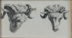 """""""Two Rams Looking Down & To Their Left,"""" Etching by Karel DuJardin"""
