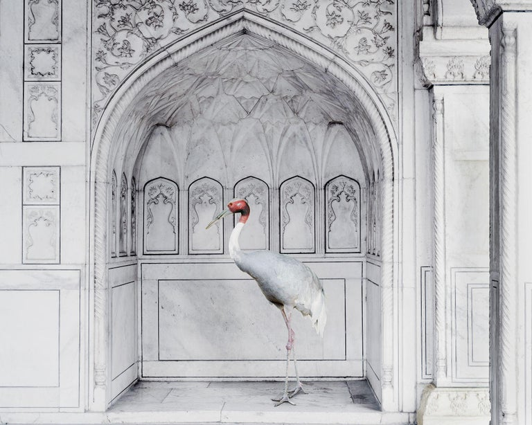Karen Knorr Homage to Ustad Mansur, Red Fort, Agra, 2017 Hahnemühle ink jet print 48 x 60 inches 122 x 152 cm Edition 1 of 5  Through her photography and videos, German-born American artist Karen Knorr explores the dynamics of power and its