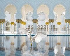 The Way of Ishq, Grand Mosque, Abu Dhabi, 2019