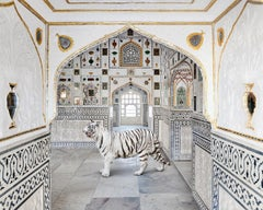 Tiger Breath, Seesh Mahal, Amer Fort, 2020