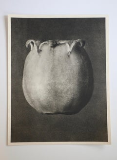 Photogravure of Enkyanthus Japonicus