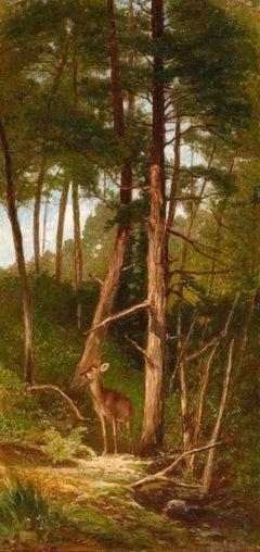 Biche dans la forêt de Barbizon