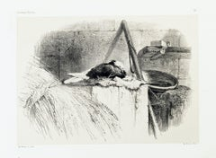 Pigeon - Original Lithograph by Karl Bodmer - Late 19th Century