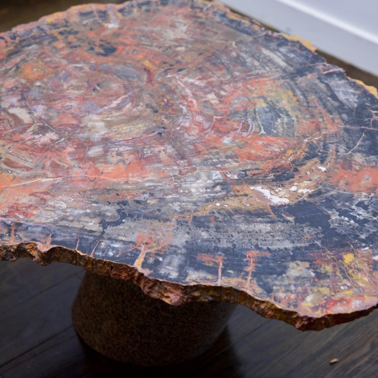 Organic Modern Petrified Wood Table Top with Married Granite Base  For Sale