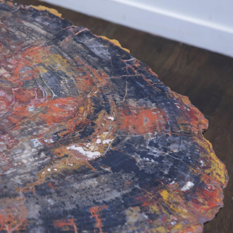 Polished Petrified Wood Table Top with Married Granite Base  For Sale