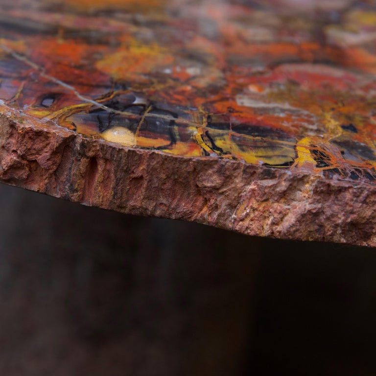20th Century Petrified Wood Table Top with Married Granite Base  For Sale
