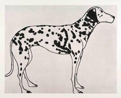 Black and White Dalmatian, Kate Boxer, Animal Art, Dog Print, Drypoint Print